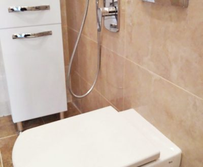 remont-vannoy-tualeta